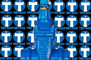 Registro ferro fundido com bolsas para o tubo ponta-bolsa-anel (PBA)